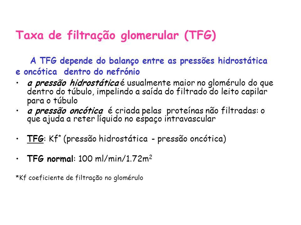 Taxa de filtração glomerular (TFG)