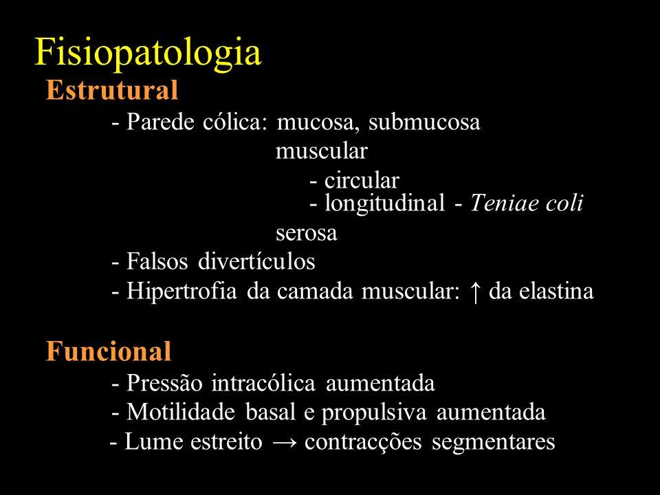 Fisiopatologia Estrutural Funcional - Parede cólica: mucosa, submucosa