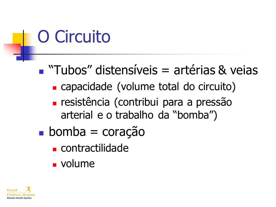 O Circuito Tubos distensíveis = artérias & veias bomba = coração