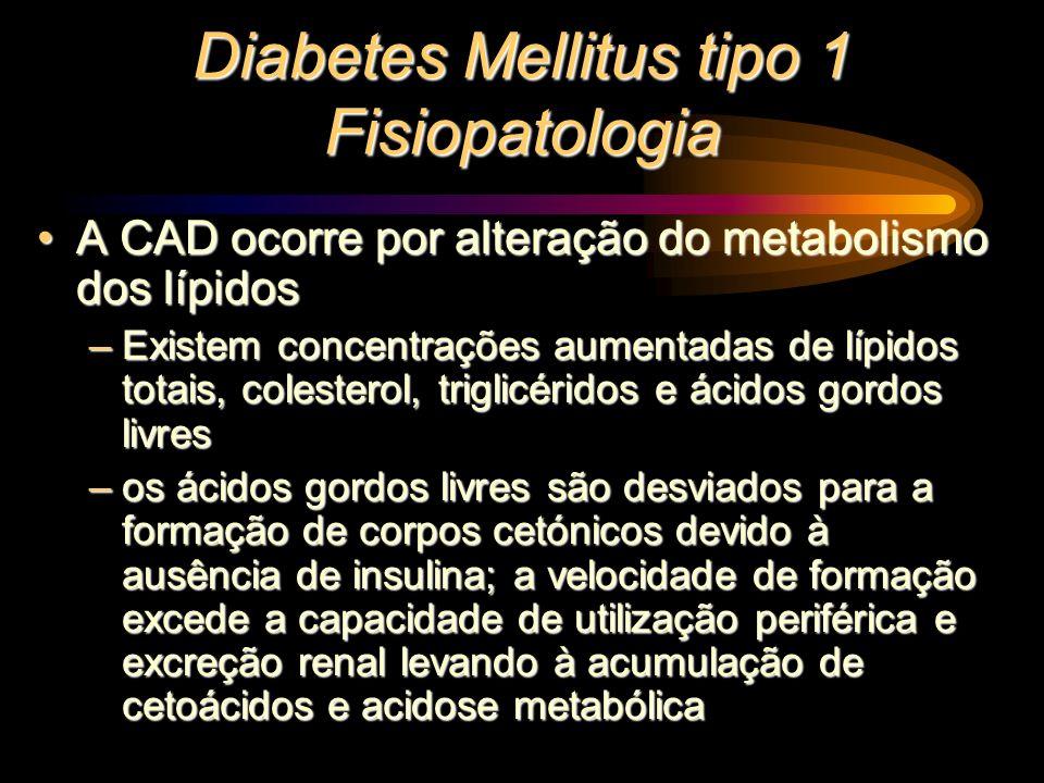 Diabetes Mellitus tipo 1 Fisiopatologia