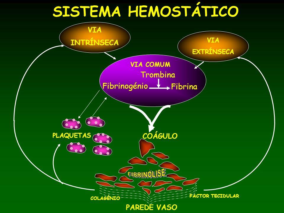 SISTEMA HEMOSTÁTICO Trombina Fibrinogénio Fibrina VIA INTRÍNSECA