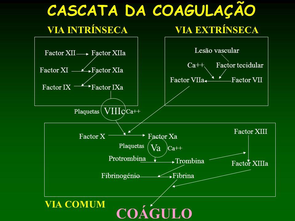 CASCATA DA COAGULAÇÃO COÁGULO VIA INTRÍNSECA VIA EXTRÍNSECA VIIIc Va