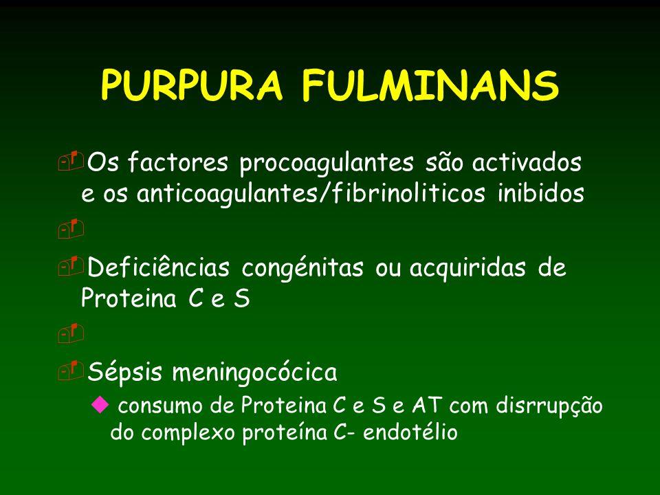 PURPURA FULMINANS Os factores procoagulantes são activados e os anticoagulantes/fibrinoliticos inibidos.