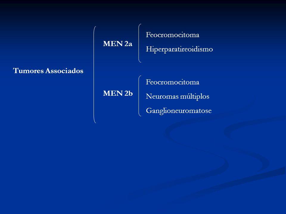 Feocromocitoma Hiperparatireoidismo. MEN 2a. Tumores Associados. Feocromocitoma. Neuromas múltiplos.