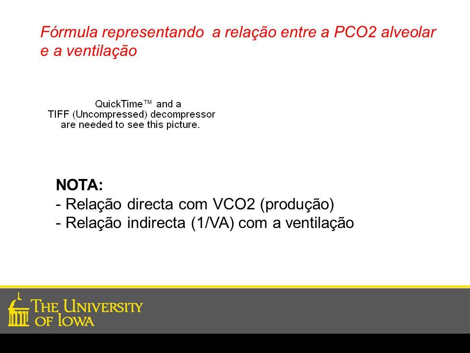 Fórmula representando a relação entre a PCO2 alveolar