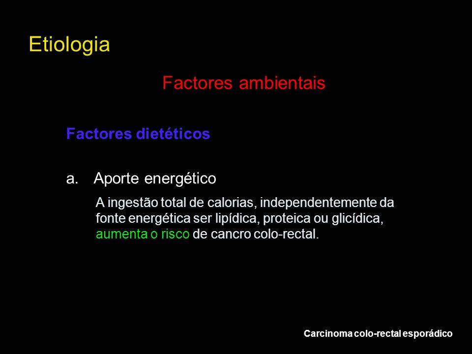 Etiologia Factores ambientais Factores dietéticos Aporte energético