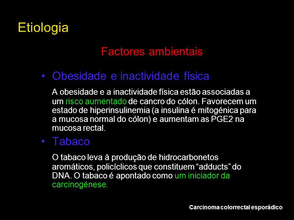 Etiologia Factores ambientais Obesidade e inactividade física