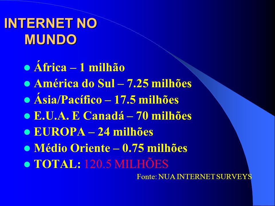 INTERNET NO MUNDO África – 1 milhão América do Sul – 7.25 milhões