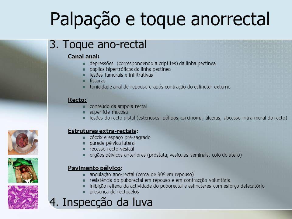 Palpação e toque anorrectal