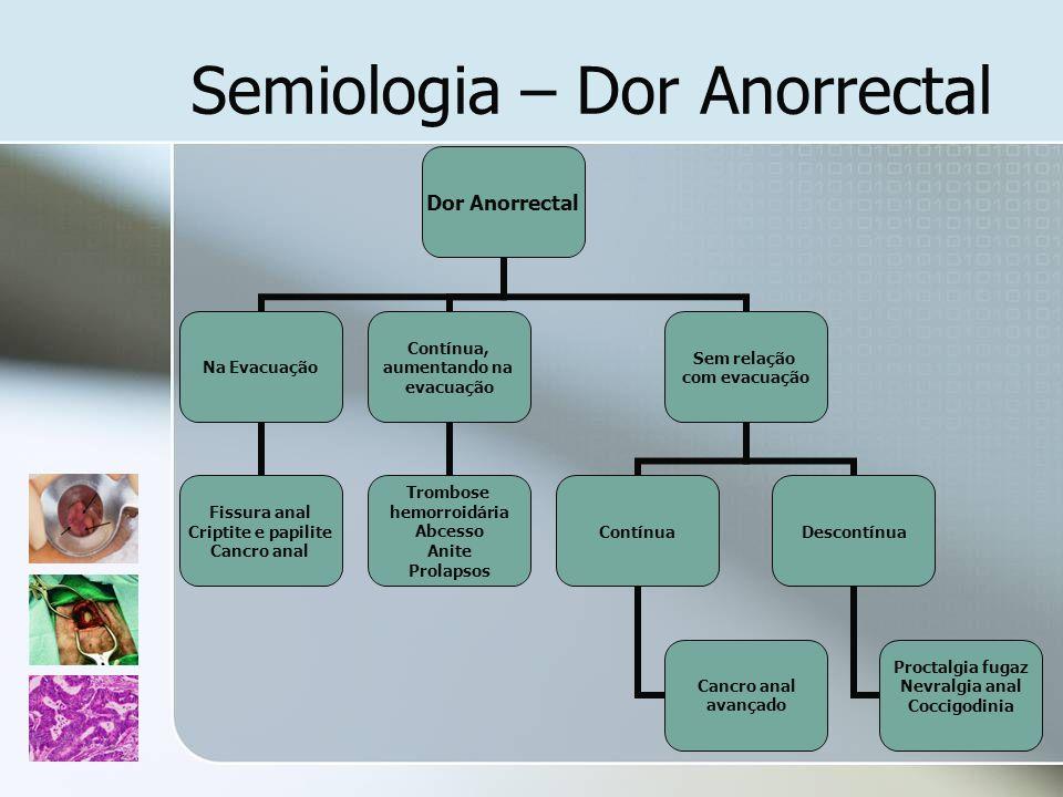 Semiologia – Dor Anorrectal