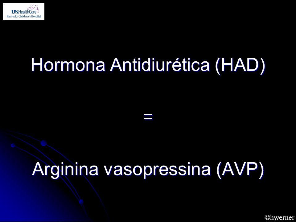 Hormona Antidiurética (HAD) = Arginina vasopressina (AVP)
