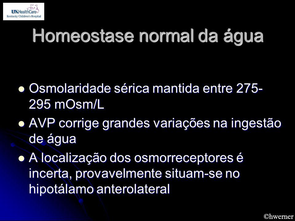 Homeostase normal da água