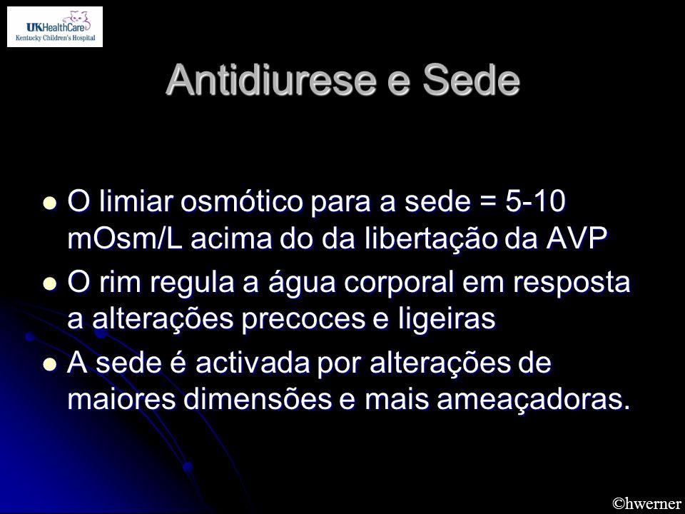 Antidiurese e Sede O limiar osmótico para a sede = 5-10 mOsm/L acima do da libertação da AVP.