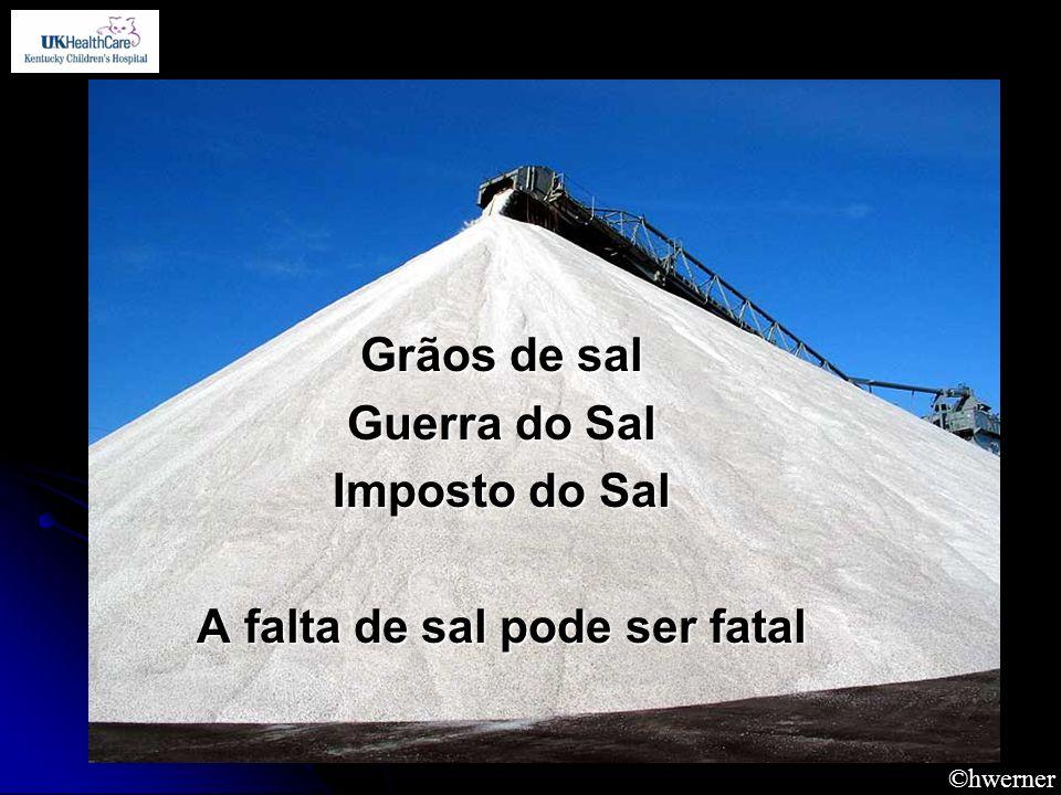 A falta de sal pode ser fatal