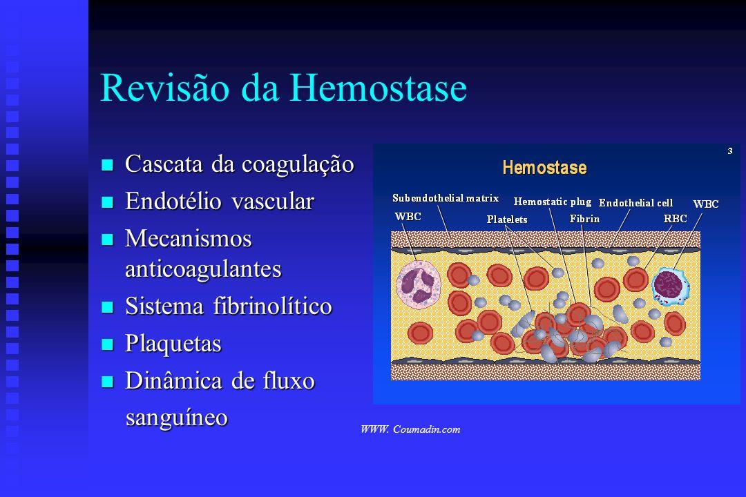 Revisão da Hemostase Cascata da coagulação Endotélio vascular