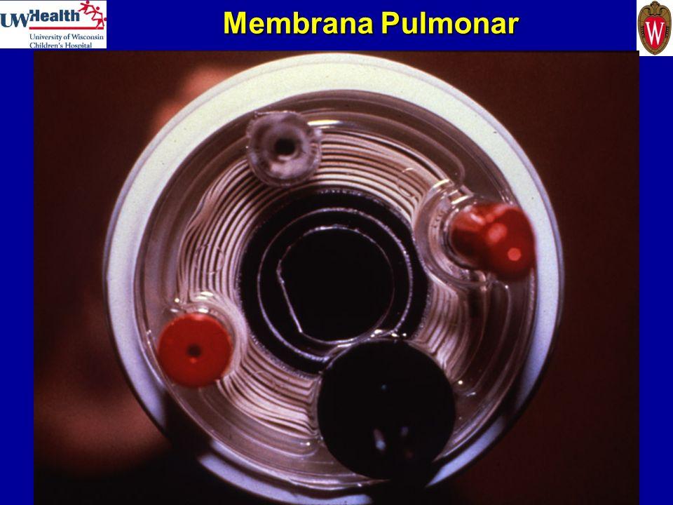 Membrana Pulmonar