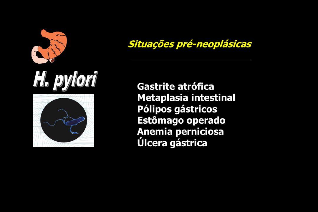 H. pylori Situações pré-neoplásicas Gastrite atrófica