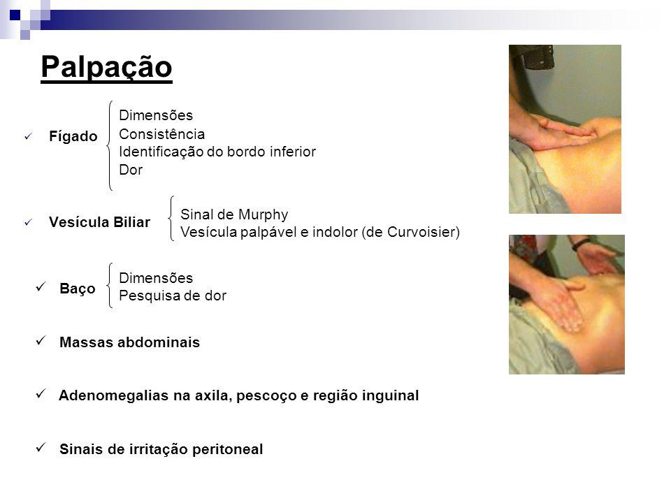Palpação Dimensões Fígado Consistência Identificação do bordo inferior