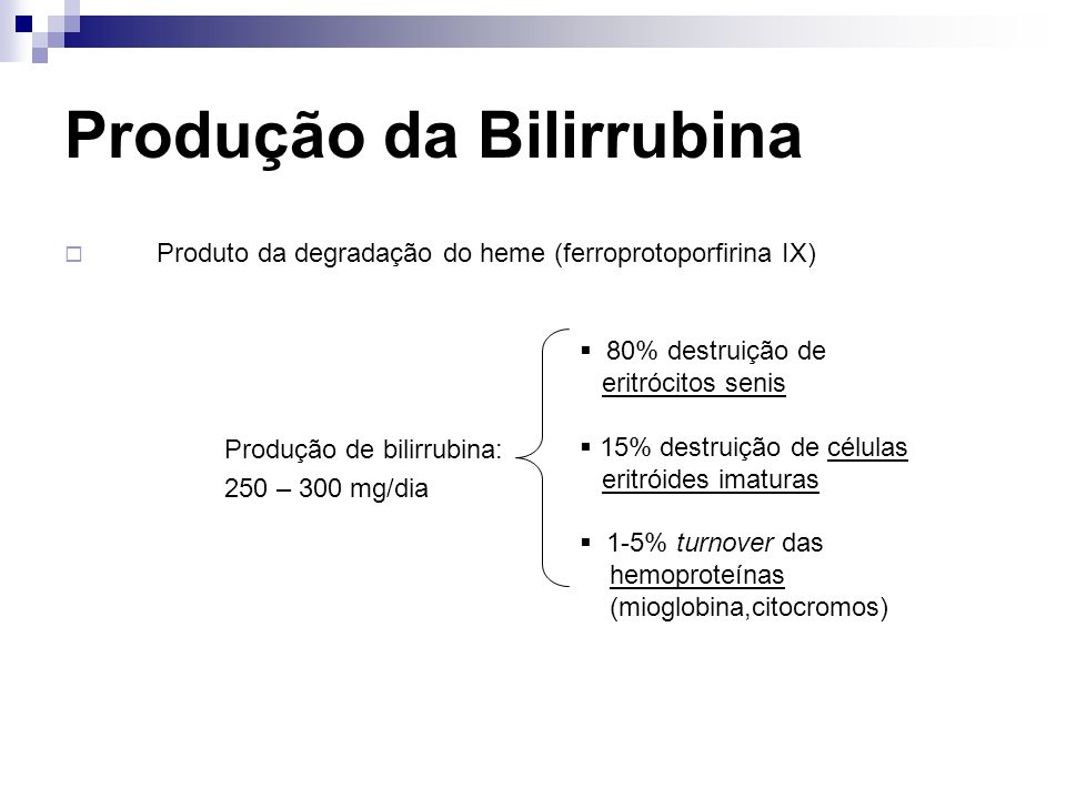 Produção da Bilirrubina