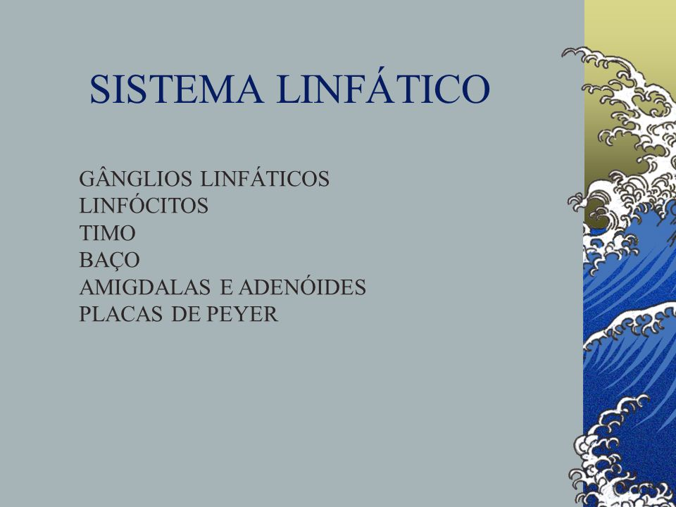 SISTEMA LINFÁTICO GÂNGLIOS LINFÁTICOS LINFÓCITOS TIMO BAÇO