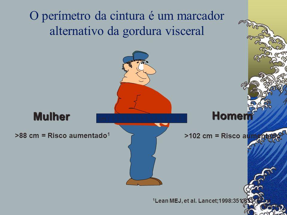 O perímetro da cintura é um marcador alternativo da gordura visceral