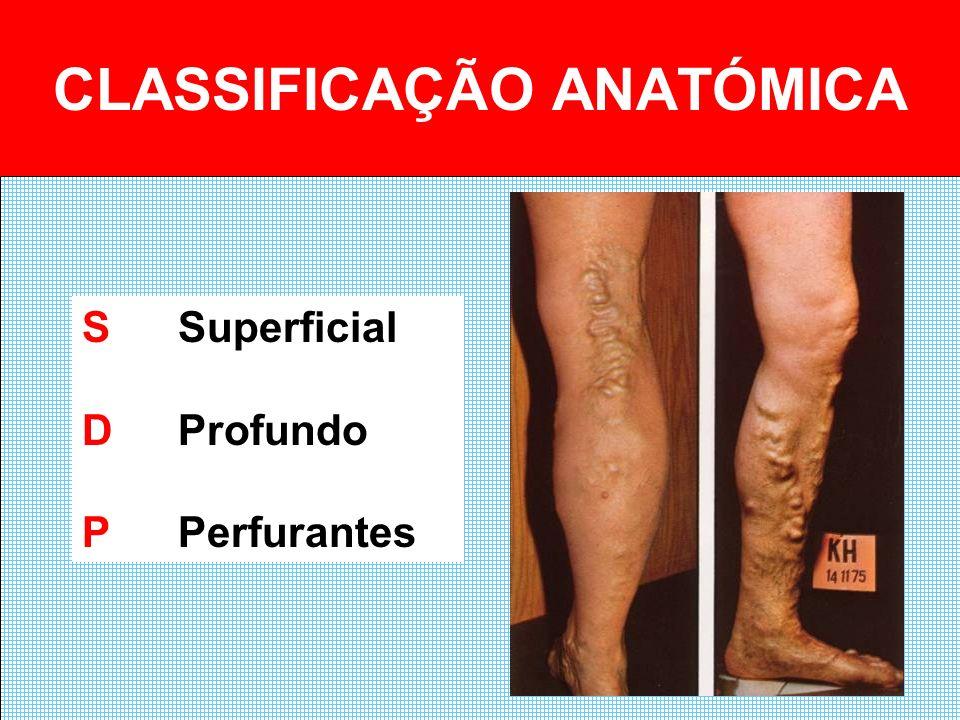 CLASSIFICAÇÃO ANATÓMICA