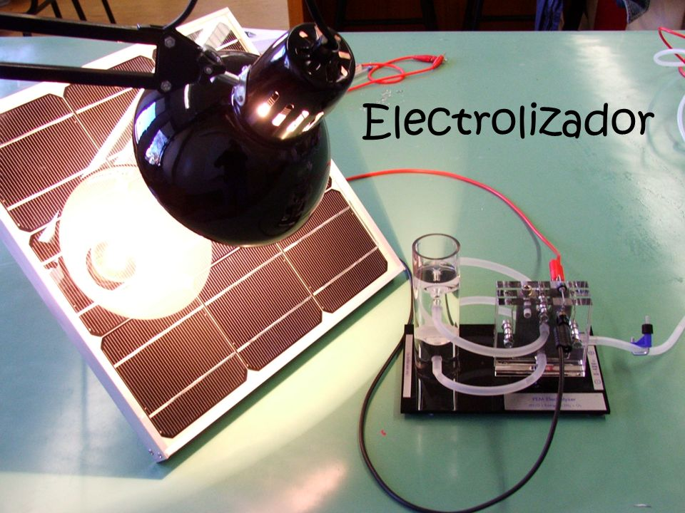 Electrolizador