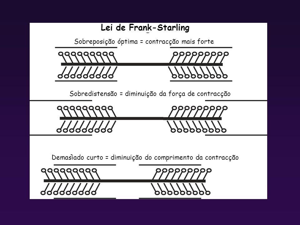 Lei de Frank-Starling Sobreposição óptima = contracção mais forte