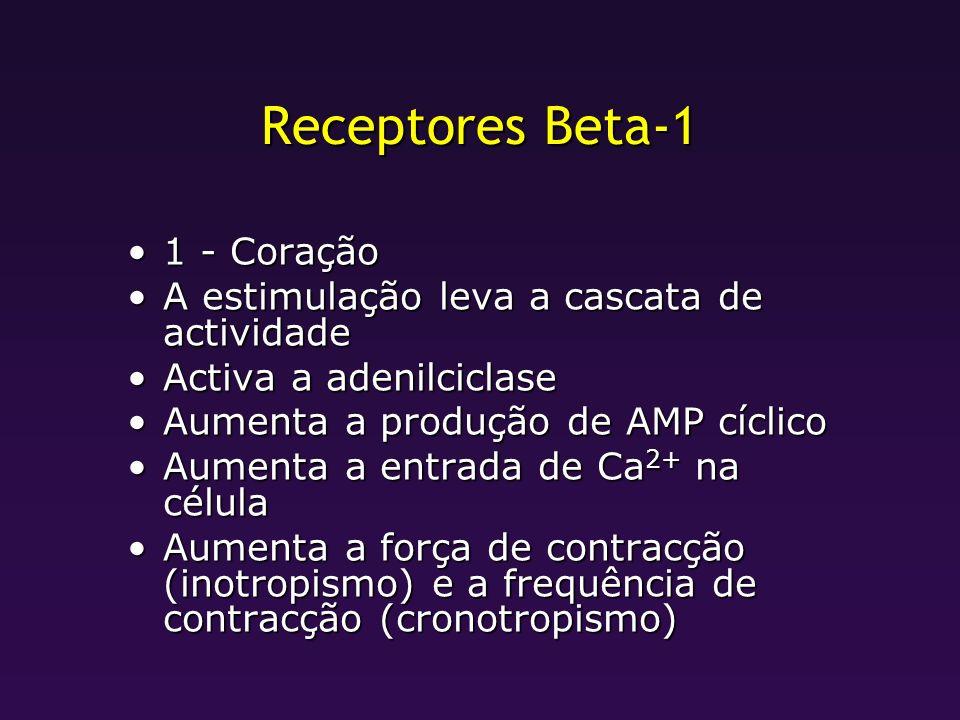 Receptores Beta-1 1 - Coração