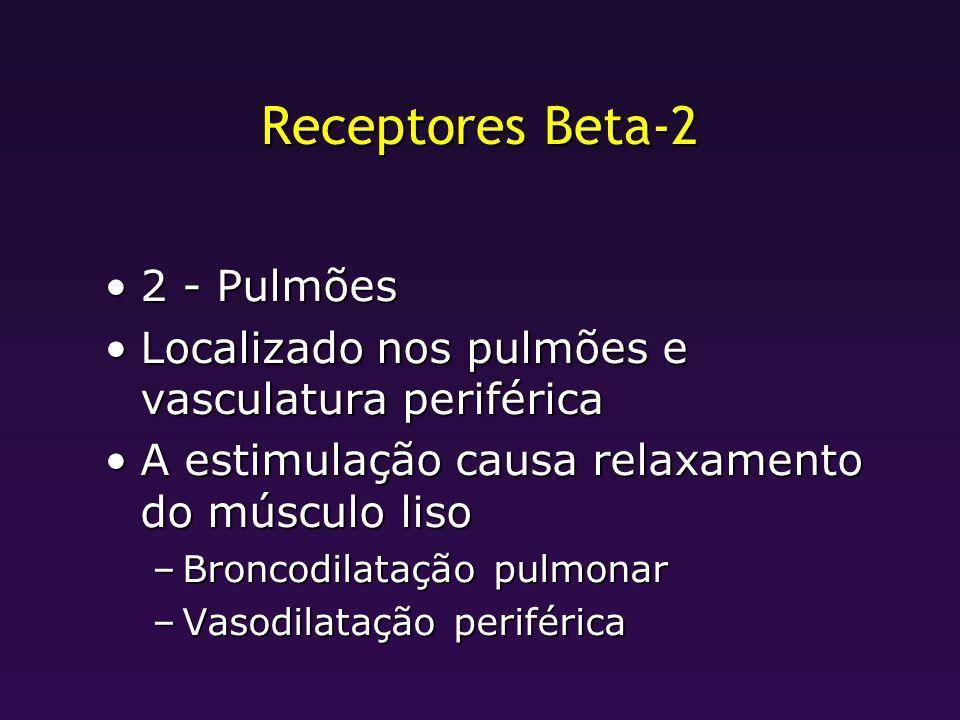 Receptores Beta-2 2 - Pulmões
