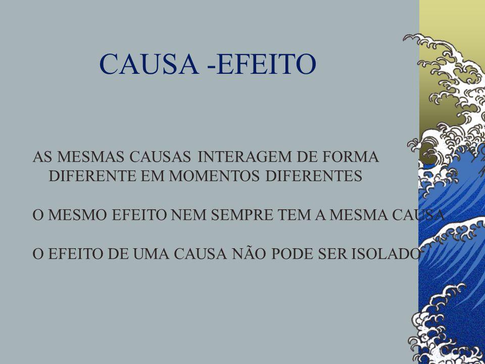 CAUSA -EFEITO AS MESMAS CAUSAS INTERAGEM DE FORMA