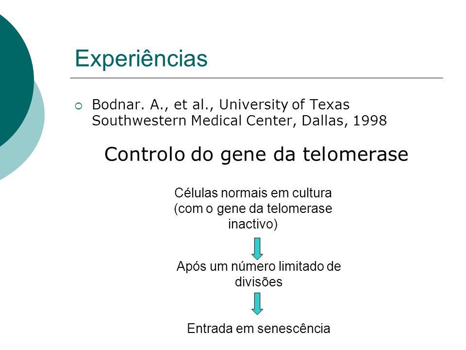 Experiências Controlo do gene da telomerase