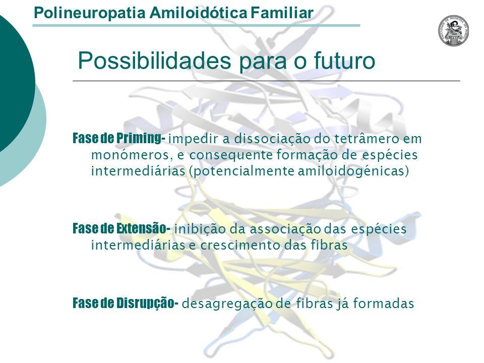 Possibilidades para o futuro