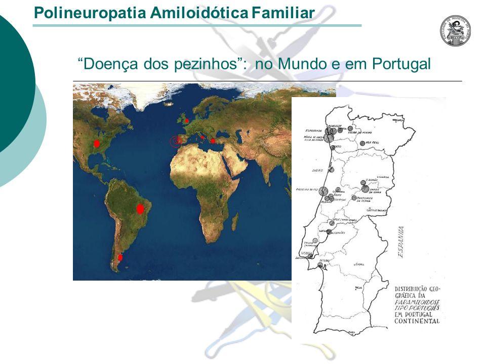 Doença dos pezinhos : no Mundo e em Portugal