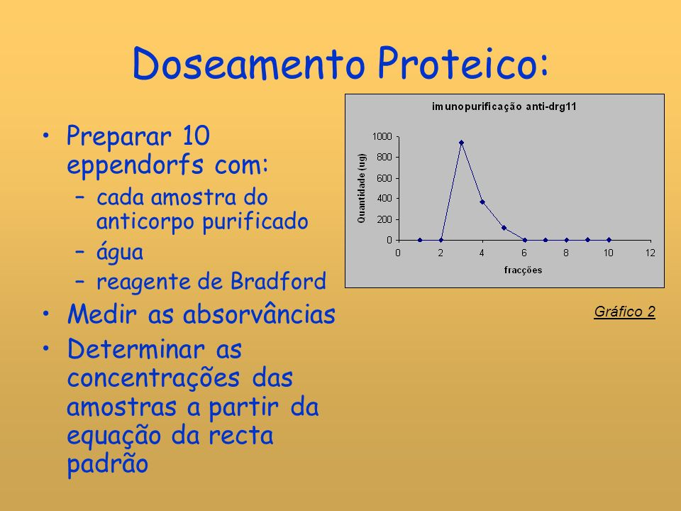 Doseamento Proteico: Preparar 10 eppendorfs com: Medir as absorvâncias