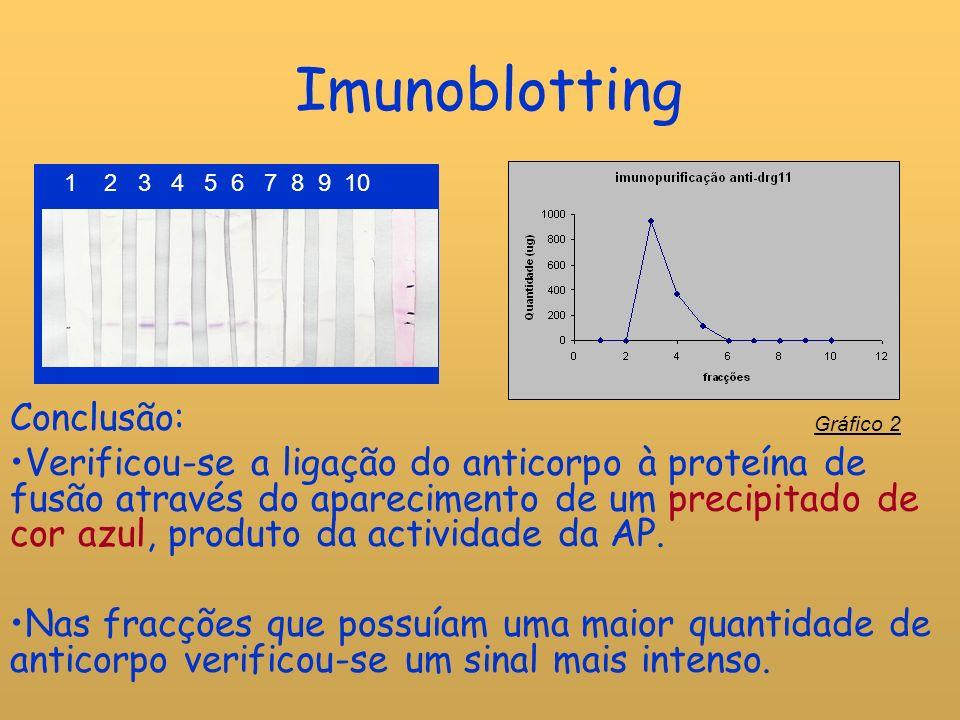 Imunoblotting Conclusão: