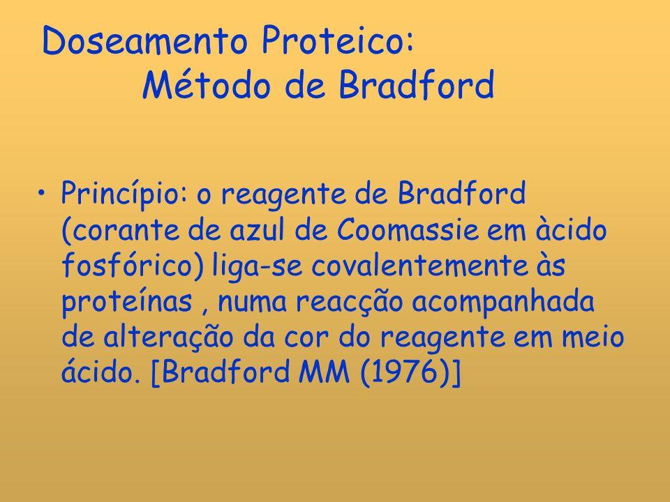 Doseamento Proteico: Método de Bradford