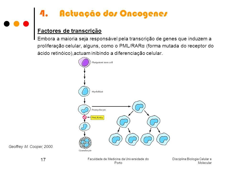 Actuação dos Oncogenes