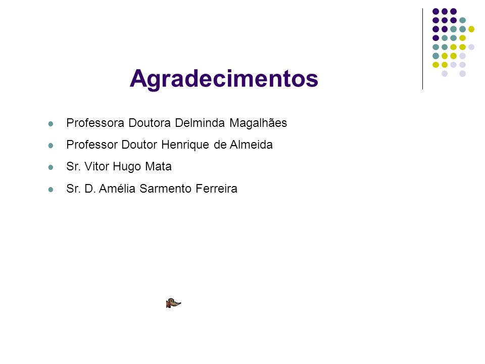 Agradecimentos Professora Doutora Delminda Magalhães