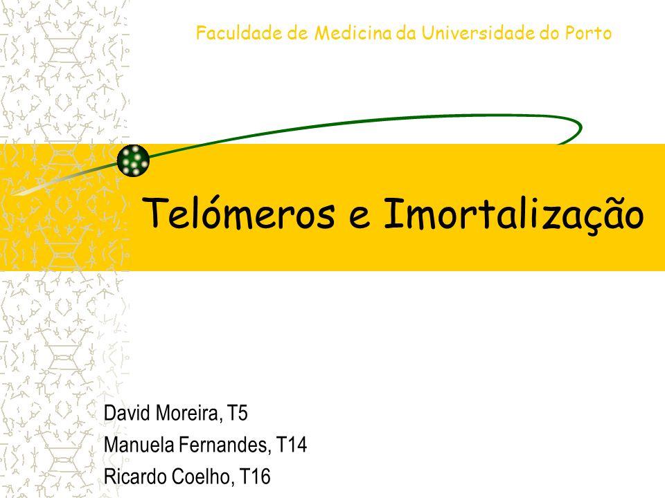 Telómeros e Imortalização