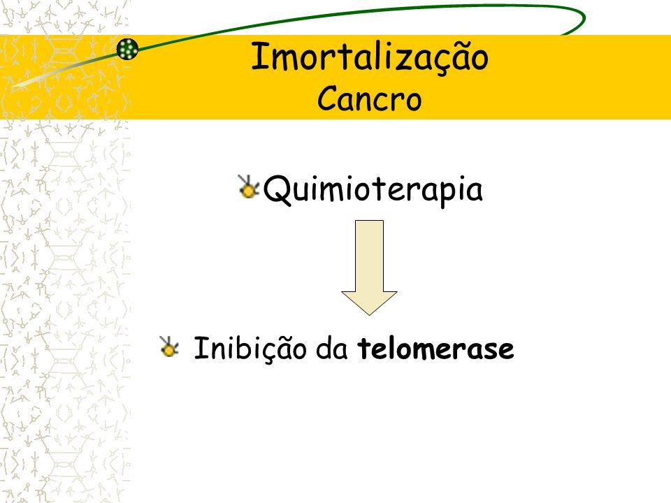 Inibição da telomerase