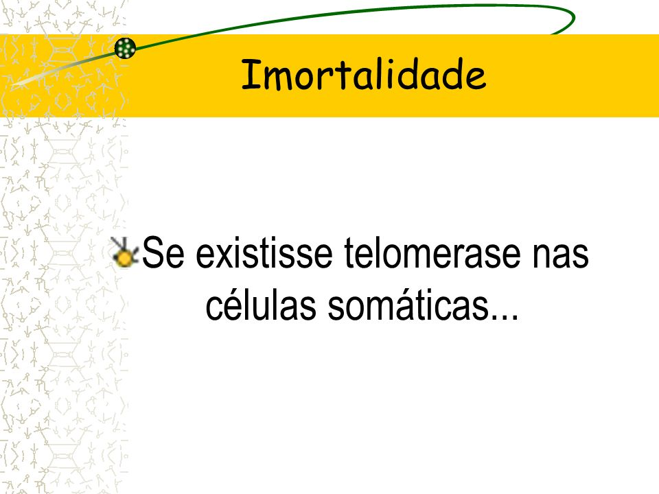 Se existisse telomerase nas células somáticas...