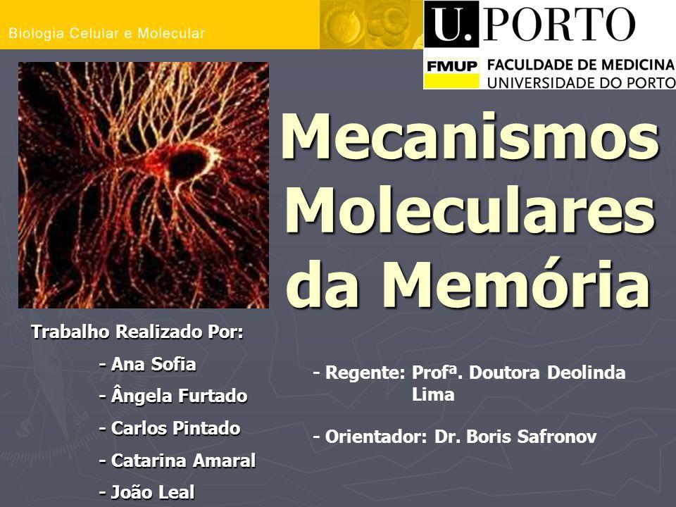 Mecanismos Moleculares da Memória
