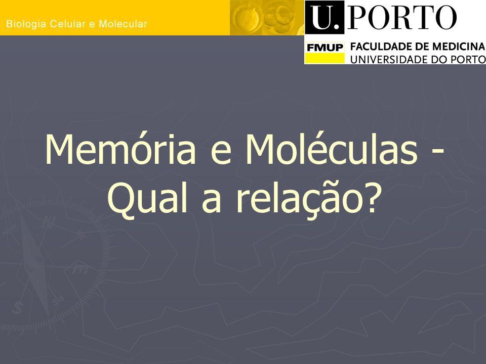 Memória e Moléculas - Qual a relação