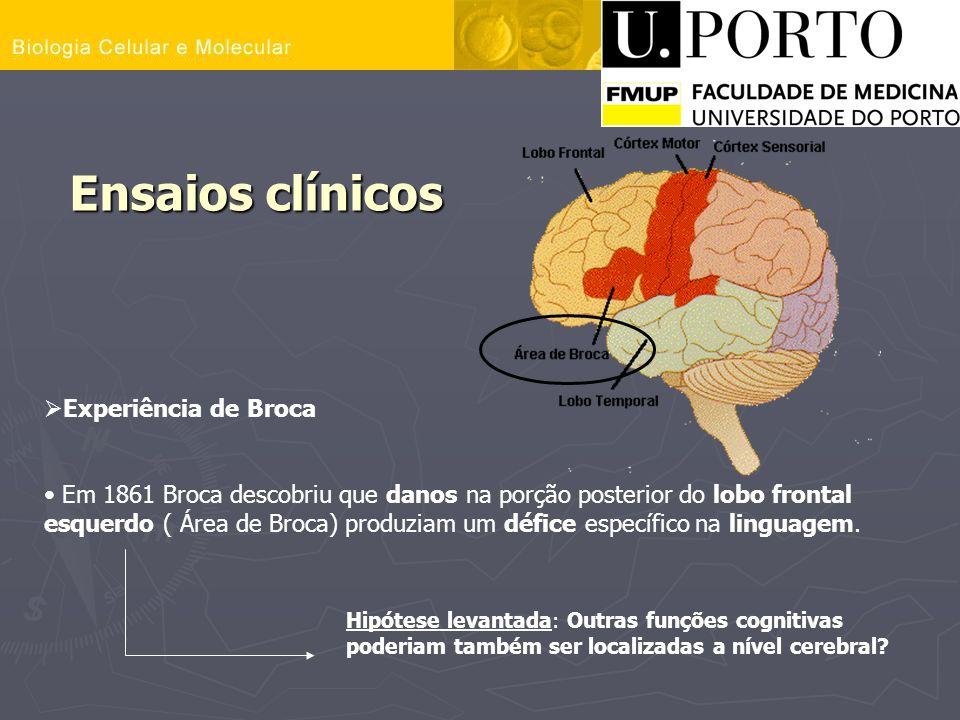 Ensaios clínicos Experiência de Broca