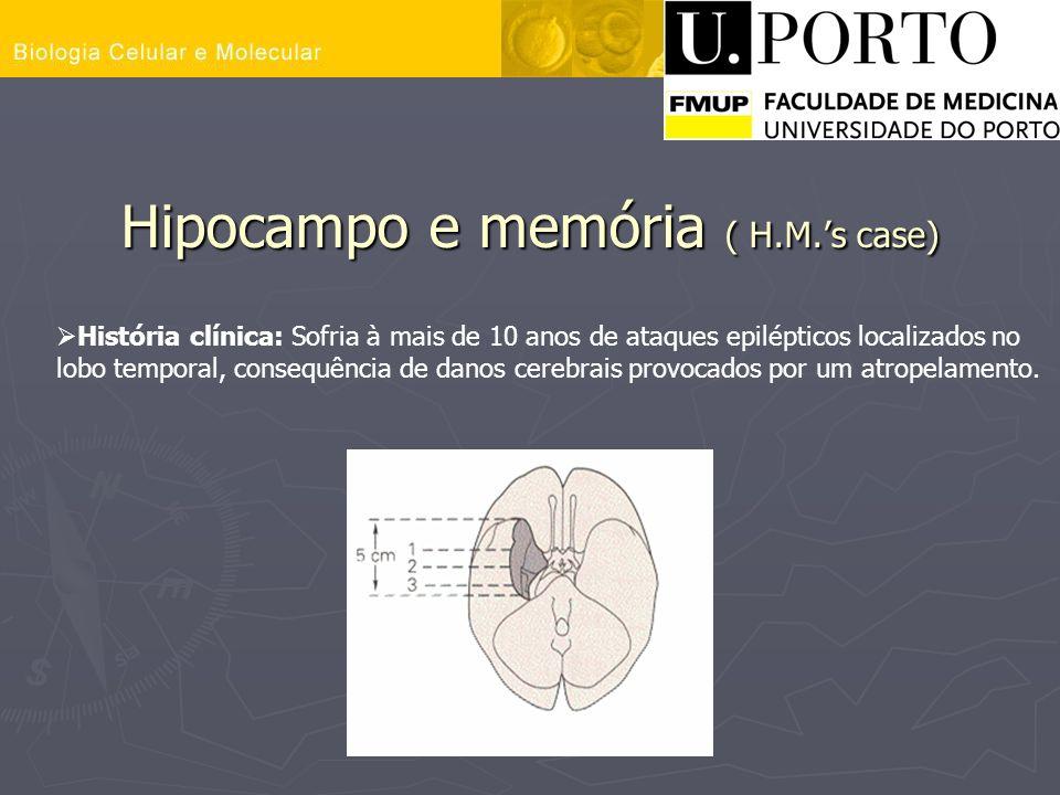 Hipocampo e memória ( H.M.'s case)