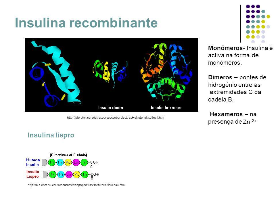 Insulina recombinante