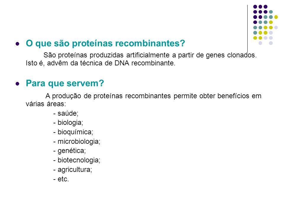 O que são proteínas recombinantes