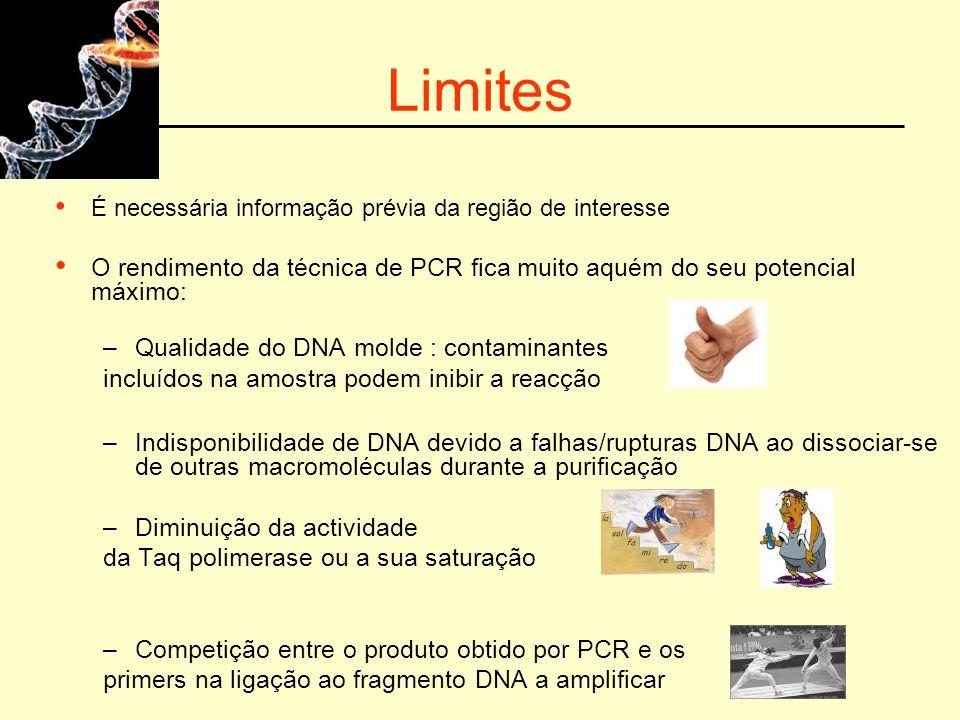 Limites É necessária informação prévia da região de interesse. O rendimento da técnica de PCR fica muito aquém do seu potencial máximo: