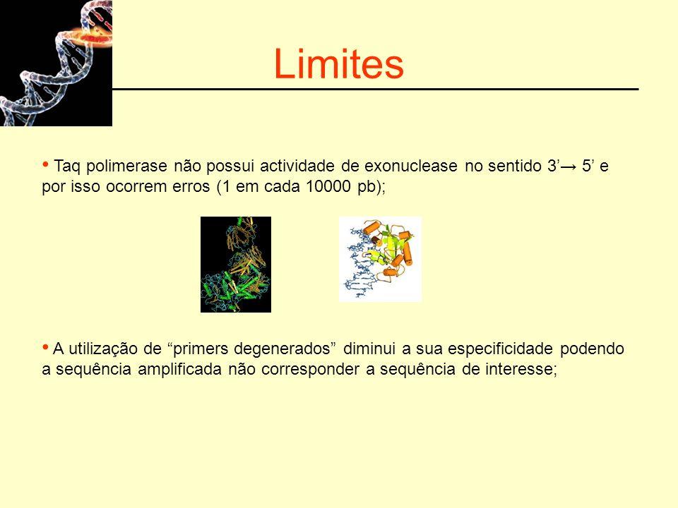 Limites Taq polimerase não possui actividade de exonuclease no sentido 3'→ 5' e por isso ocorrem erros (1 em cada 10000 pb);
